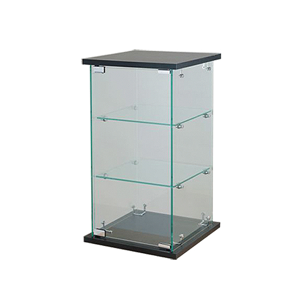 Counter Case with Lock